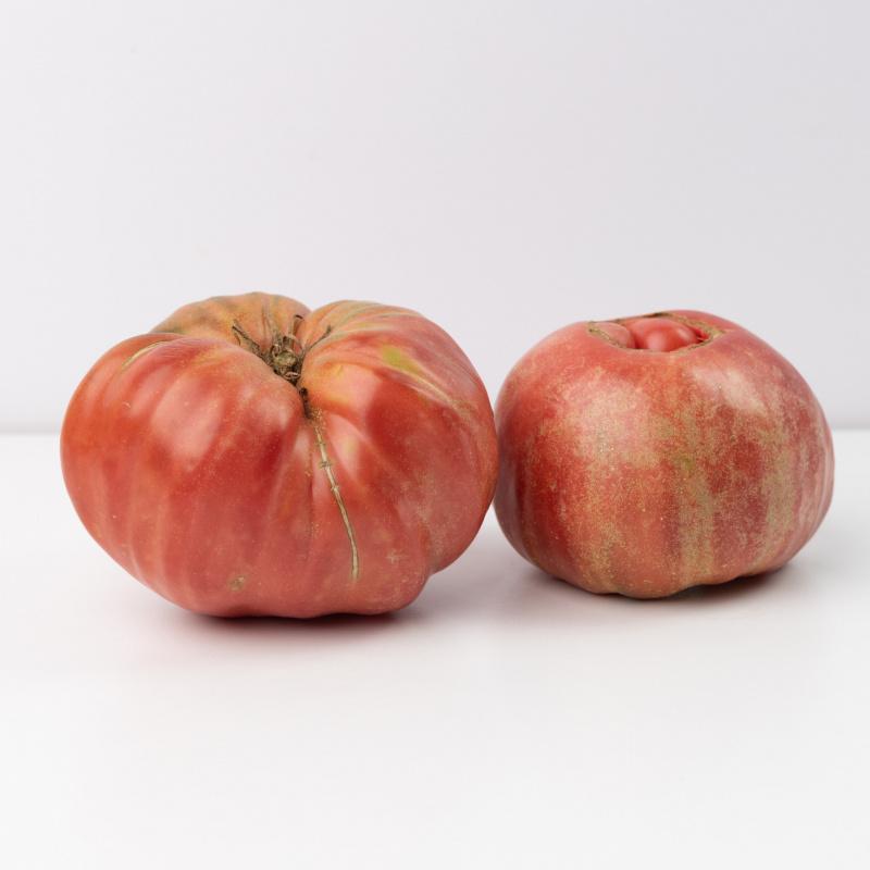 Скопски црвен јабучар од старо семе