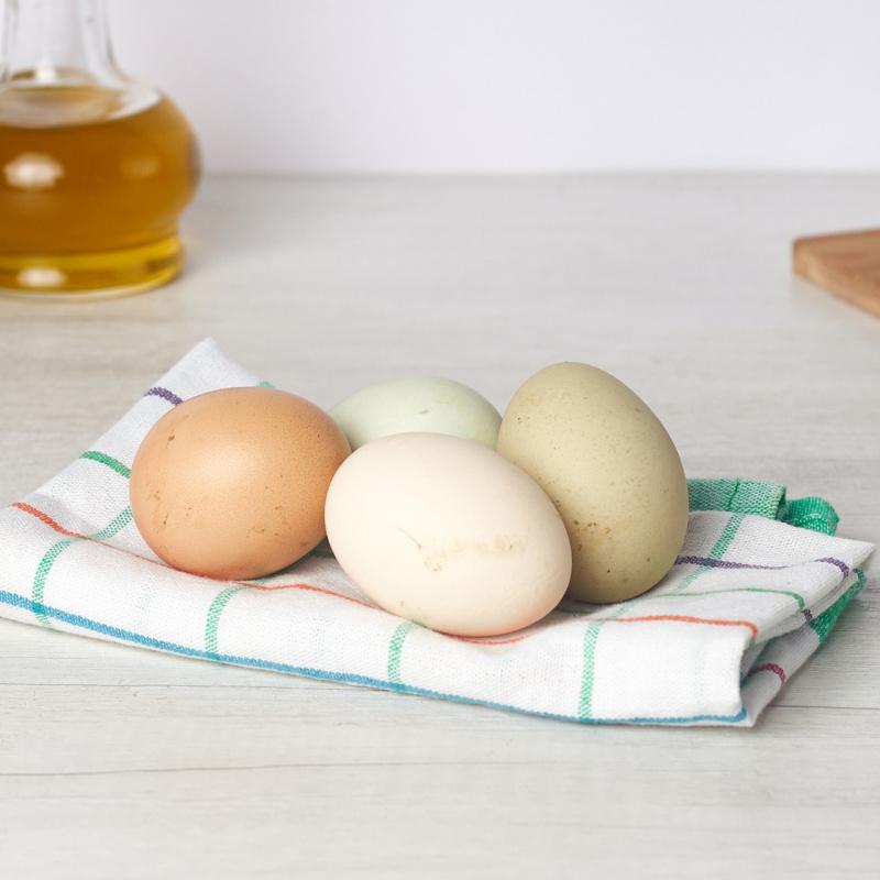 Еко јајца од рурални кокошки